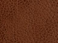 Eco-Leather