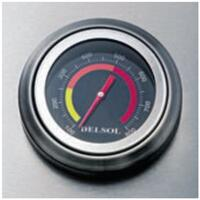 Integrated Temparature Gauge