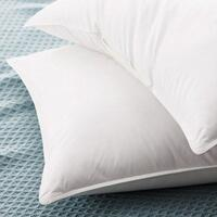 Feather-Filled Cushion