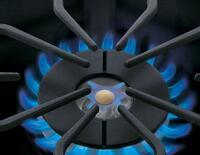 PowerPlus® Full Range Burner