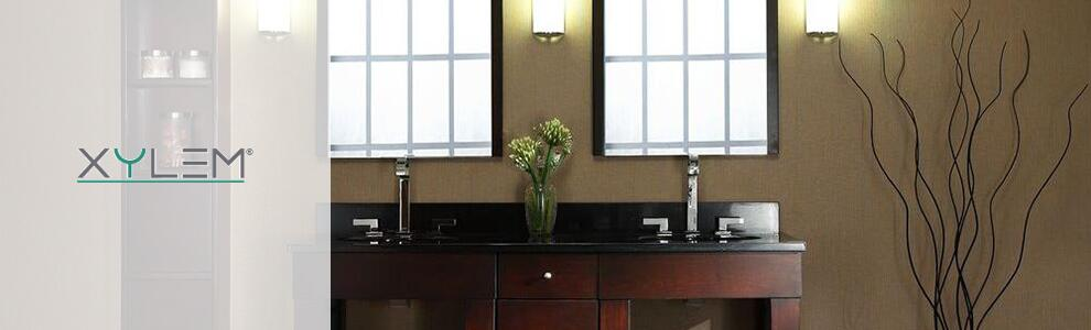 Xylem Sinks and Faucets